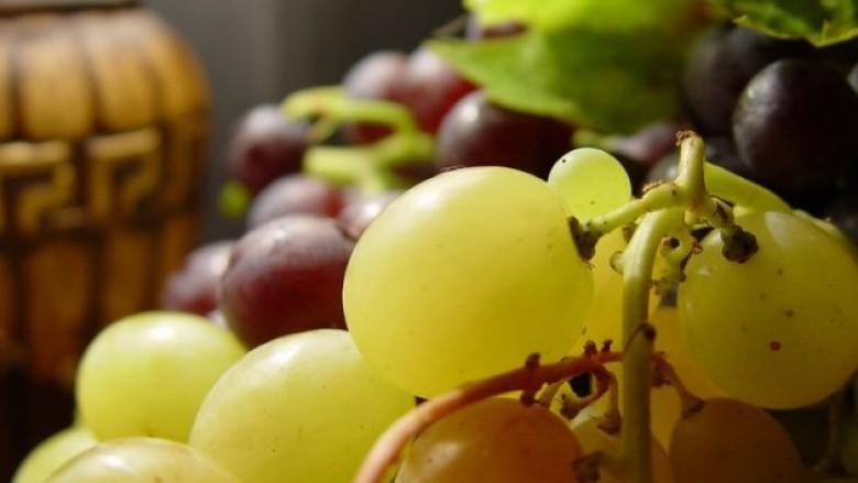 Vreshtarët e Kosovës, në hall me shitjen e rrushit (Video)