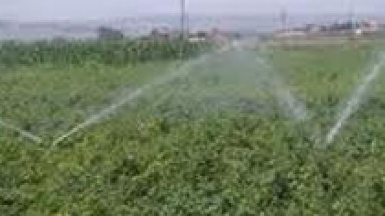 Një milion euro për ujitjen e tokave bujqësore