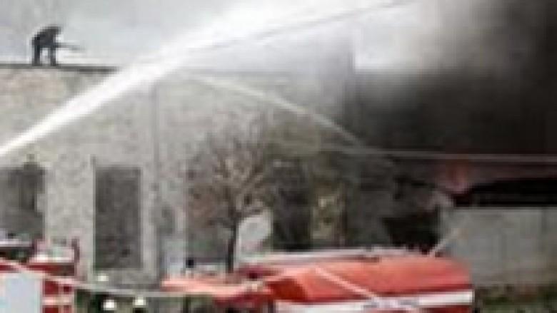 Lezhë, zjarr në fabrikën e përpunimit të peshkut