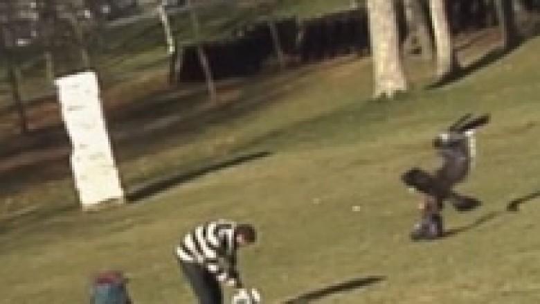 Megjithatë e montuar: Tre studentë e krijuan videon e shqiponjës që rrëmben fëmijën