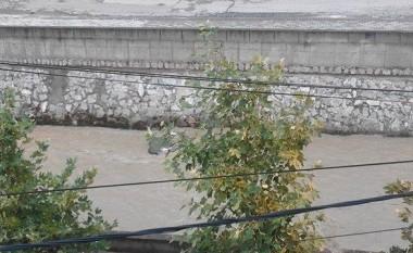 Nxirret lopa e ngordhur nga lumi Vardar, nuk dihet origjina nga ka ardhur (Foto)