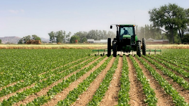 Bujqit e Maqedonisë të dorëzojnë kërkesën për dëmshpërblim nga të reshurat e fuqishme