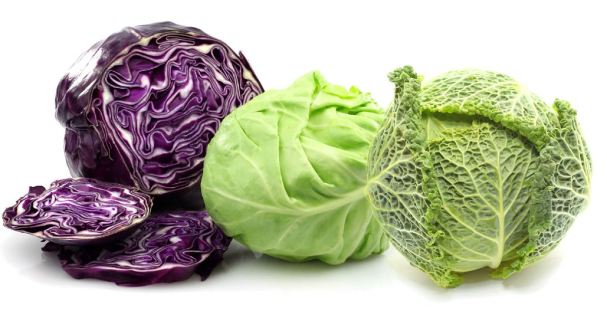 The Humble Cabbage – One of the Healthiest Vegetables You Can Eat