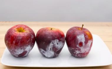 Qitni ujë të nxehtë mollëve dhe me siguri do të zbuloni diç të tmerrshme (video)