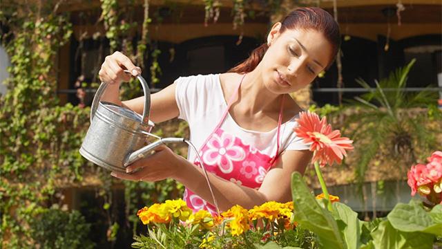 Young_woman_watering_plants-xlarge_trans++d6E9MJgsUmDo5WYwiyZU3hpU6XAwWrz-QD_Jr2mYF3U