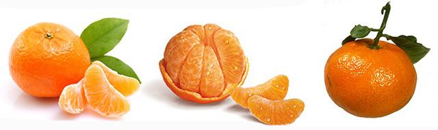 clementines-tangerines
