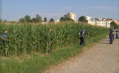 """U kapën në """"kallamoq"""", dy shqiptarët akuzohen për 47 vjedhje të ndryshme"""