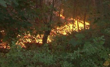 """Po """"zhvishen"""" pyjet e Sharrit, ndërtohet rrugë për në Leshnicë (Video)"""