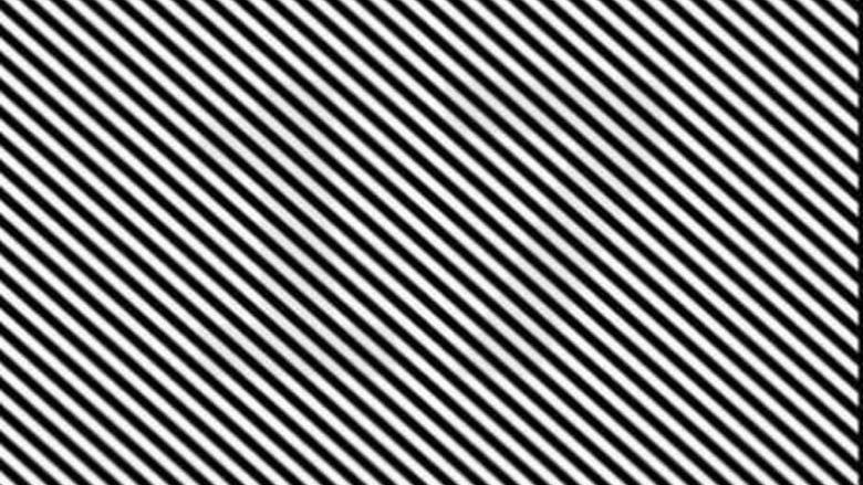 A mund ta gjeni numrin në këtë fotografi? (Foto)