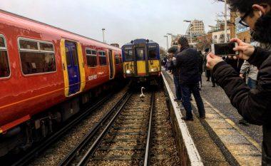 Mjellma që ecte nëpër binarë detyroi trenin të lëvizë ngadalë për më shumë se tri kilometra (Video)
