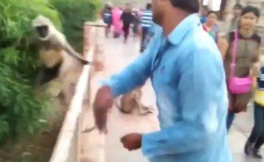 Veprimi i ulët i vizitorit të kopshtit zoologjik ka nxitur shumë shqetësime (Video)