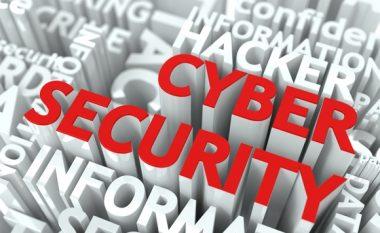 Garë ndërkombëtare me hakerët në Kosovë
