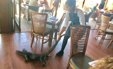 Kamerierja e guximshme, nxori jashtë zvarranikun gjigant që frikësonte mysafirët e restorantit (Video)