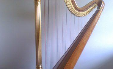 Vetëm një për qind e njerëzve, mund ta shohin instrumentin muzikor të fshehur në ilustrim (Foto)