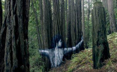 """""""Magjia"""" në mal dhe artisti unik: """"Murali"""" i fshehur mes drurëve! (Foto/Video)"""