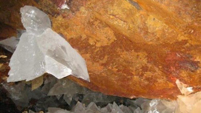 Gjenden organizmat 50 mijë vjet të vjetër
