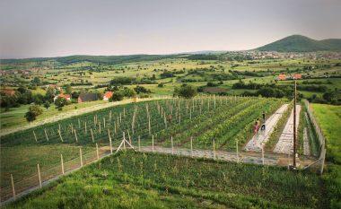 Serbia nuk mund t'i përvetësojë pronat e Kosovës