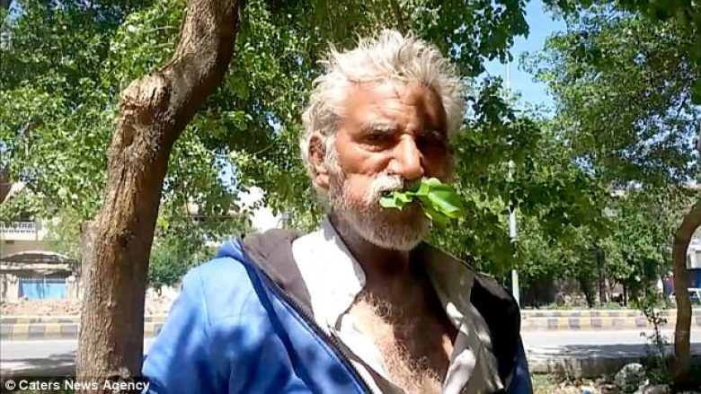 Hante gjethe dhe degë shkaku i varfërisë, bëhet i varur prej tyre (Foto)