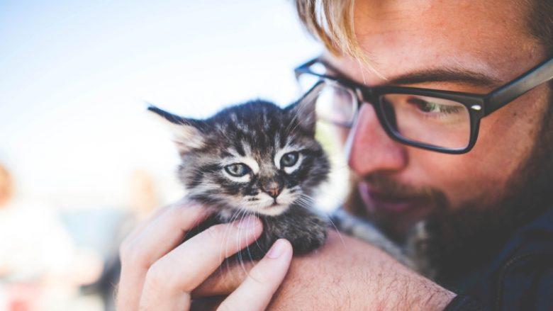 Kush i do më shumë macet: meshkujt apo femrat?