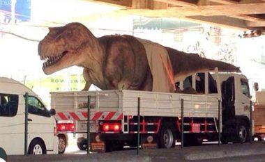 """Në një qytet të Bosnjë e Hercegovinës kanë ardhur """"dinozaurët"""" (Foto)"""