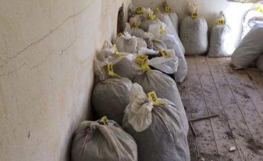 Në Lezhë sekuestrohen 700 kg narkotikë, disa të arrestuar