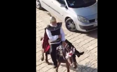 """Skënderbeu """"rikthehet"""" në Krujë, kësaj here mbi mushkë (Video)"""