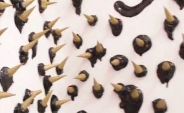 Brenda muzeut ku shfaqen ndryshe akulloret dhe sheqerkat (Video)