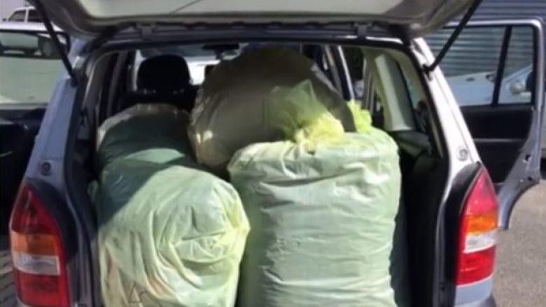 Lezhë, sekuestrohen 190 kilogram marijuanë