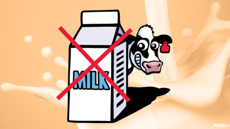 Sigurohuni që kolegët të mos ju vjedhin më qumështin nga frigoriferi (Foto)