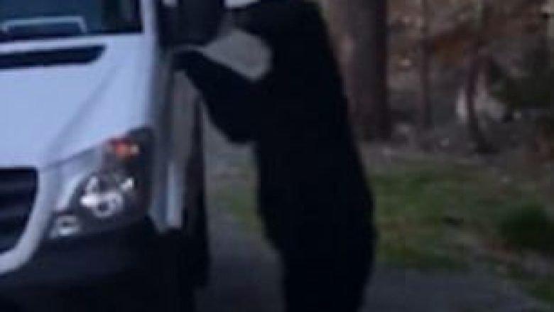 Ariu sillet si njeri: Hip në furgon dhe ulet pranë timonit si shofer (Video)