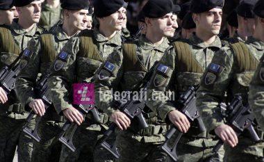 Mungesa e Qeverisë, shtyn formimin e ushtrisë (Video)