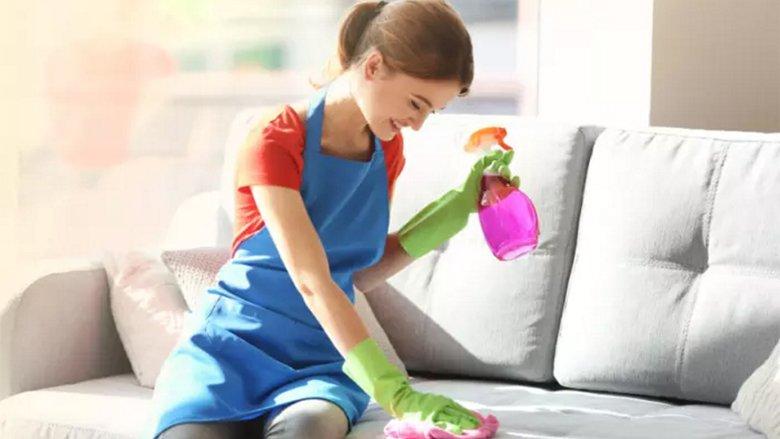 Mjetet natyrale në vend të kimikateve toksike për pastrimin e mobileve të veshura: Si t'i pastroni mobilet e lëkurës, sintetikes dhe stofit
