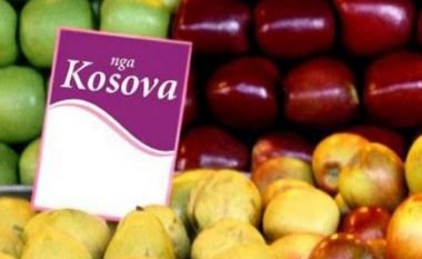Prodhimi vendor rritet me mbështetje institucionale
