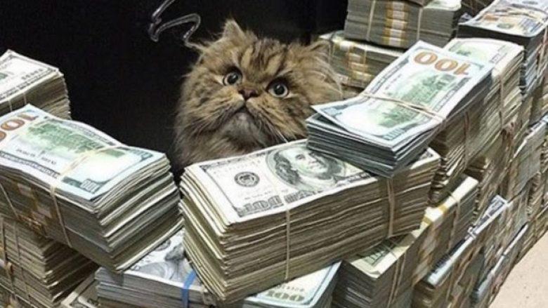 Sa ndjekës duhet të keni në Instagram për t'u bërë milioner