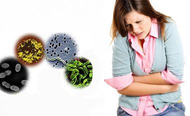 Salmonela, trihineloza, leptospiroza: cilave infeksione vërtet duhet t'u frikësohemi
