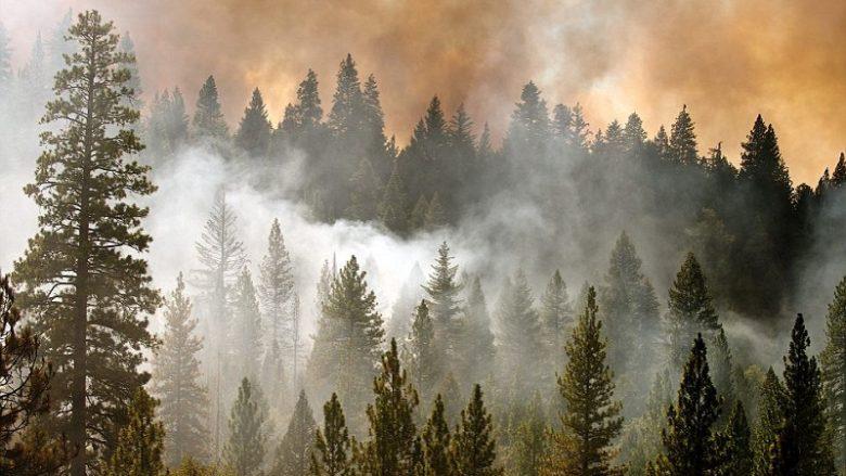 Shiu ndihmon shuarjen e zjarreve në Maqedonia