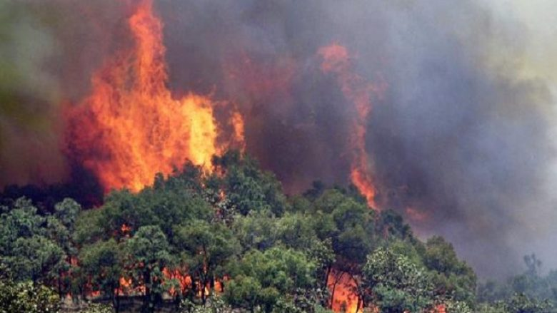 Zjarre në 13 vende të Maqedonisë