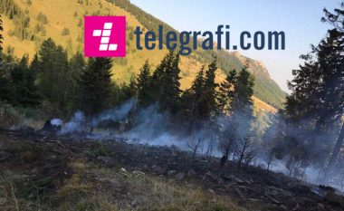 75-vjeçarja shkaktare e zjarrit në 'Makedonski Brod'