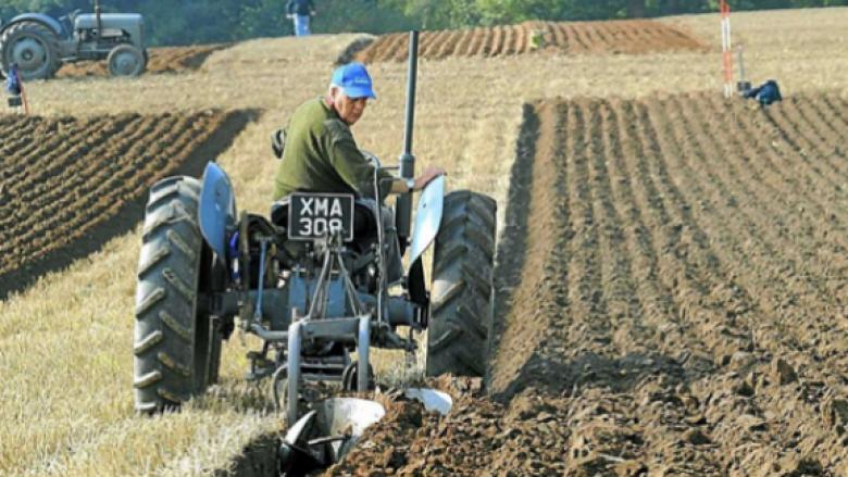 Kosova ka 187 mijë hektarë tokë të punueshme