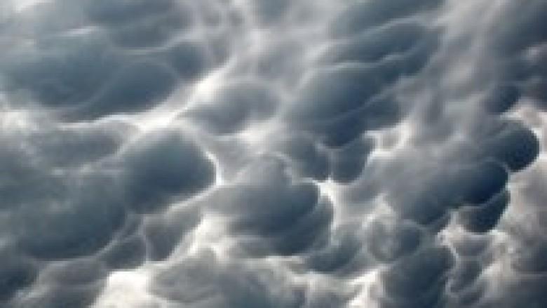 Retë e stuhive strehojnë bakterie të ndryshme