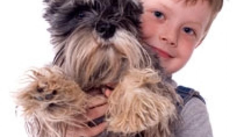 Kur duhet mbajtur qenin në familje