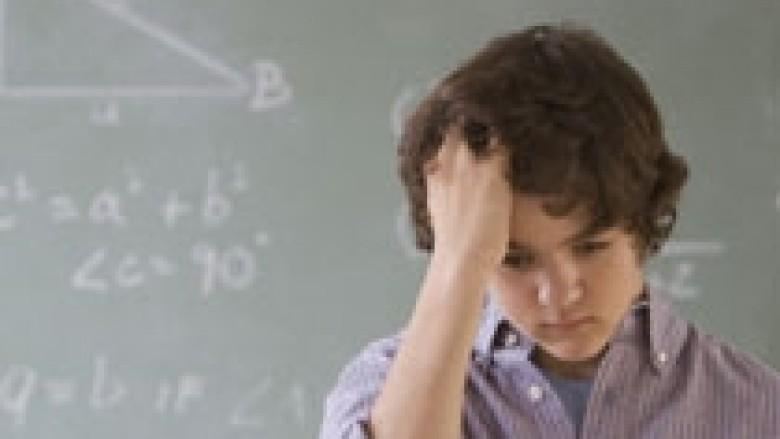 Çfarë sjell dhuna e përdorur në shkollë?