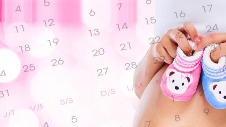 Si llogariten javët e shtatzënisë dhe termini i lindjes?