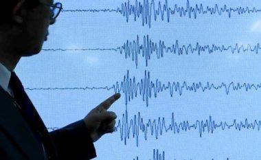 """""""Tërmete si sot ndodhin çdo 15 vite"""" (Video)"""