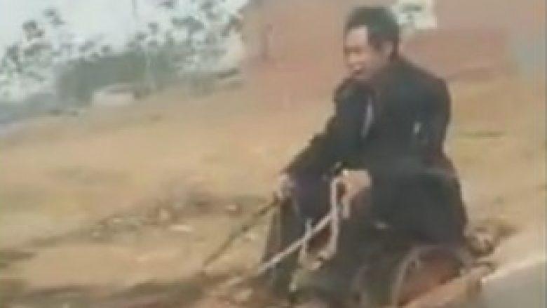 Në Kinë, jo vetëm që i hanë qentë – shihni çfarë u bëjnë atyre! (Video)