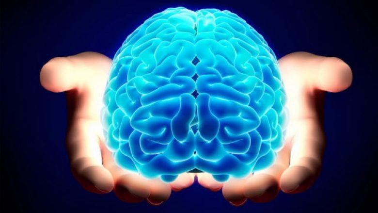 """Zbulohet në tru, """"harta e terrorit"""": Ku shkojnë kujtimet e frikshme?"""