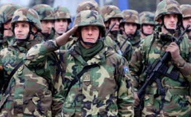Dorëzohet Daçiq: KS i OKB s'mund të marrë vendim për Ushtrinë e Kosovës