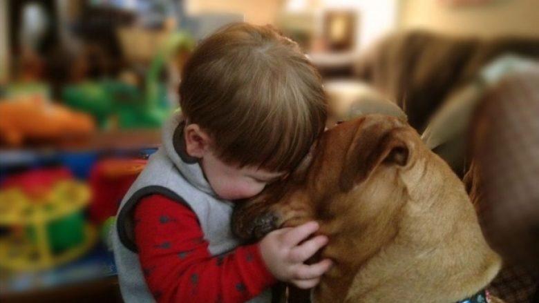 Fotot që tregojnë se përse çdo fëmijë duhet ta ketë një kafshë shtëpiake
