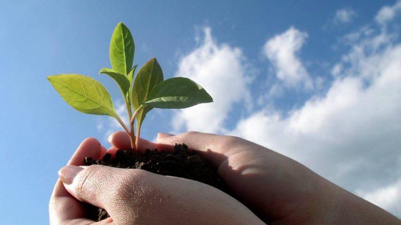Prishtina bëhet me Qendër Informative Komunale për Bujqësi