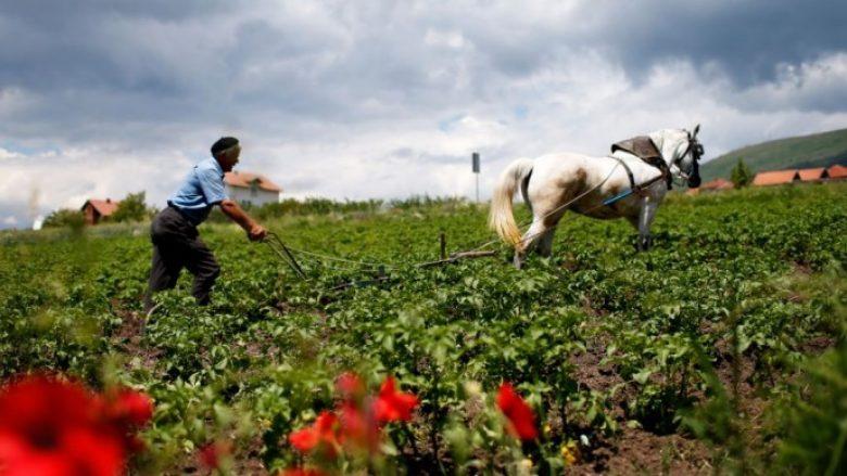 Banka botërore mbi 20 milionë euro hua Kosovës për bujqësi